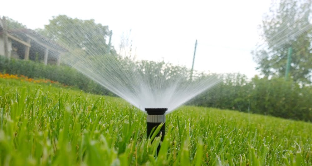 Irrigation Near Me