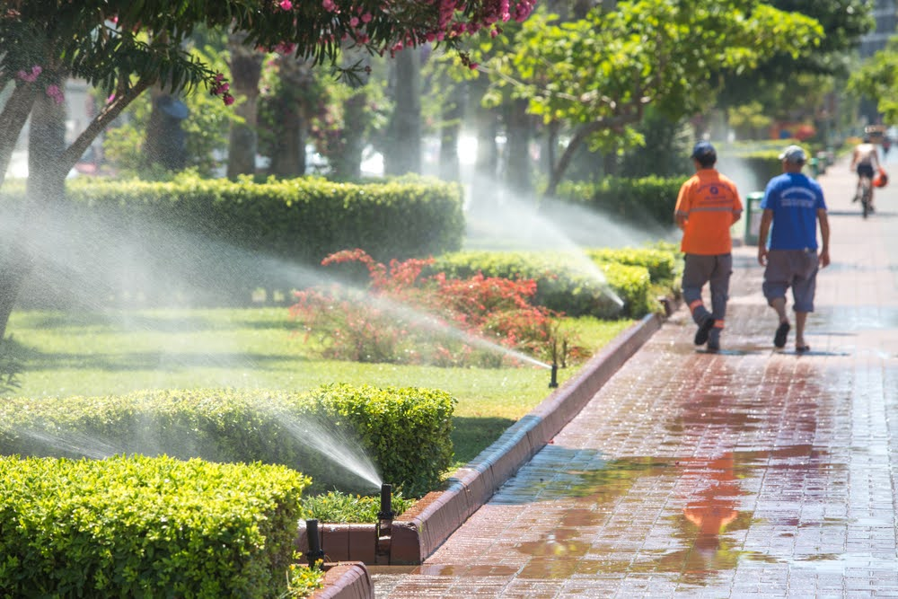 Irrigation Tucson AZ