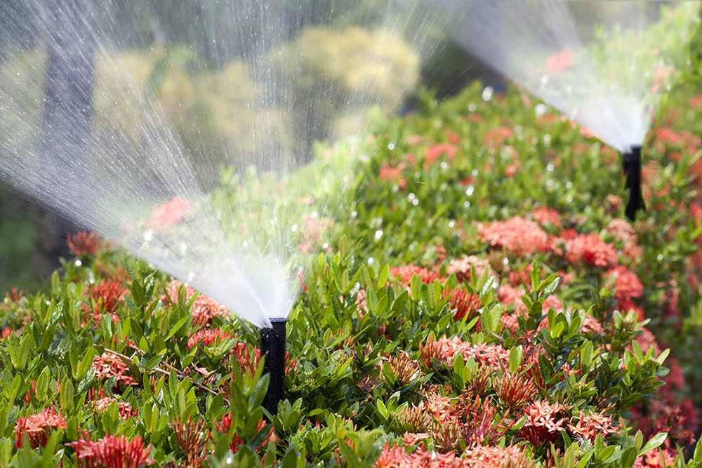 Is an Irrigation System Worth It
